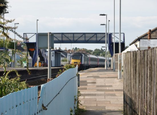 Exe To Sea Cruises: Starcross Railway Station and the walkway to the ferry pier