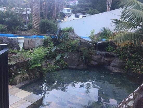 Paihia Pacific Resort Hotel: photo1.jpg