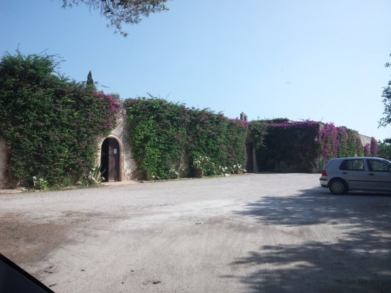 Carovigno, Italy: 20170831_101624_large.jpg