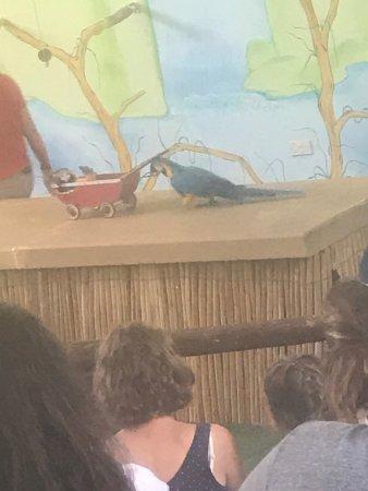 Pafos Zoo: photo4.jpg