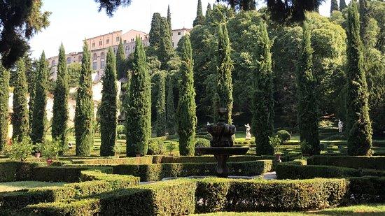 Bild von palazzo giardino giusti verona for Giardino e palazzo giusti