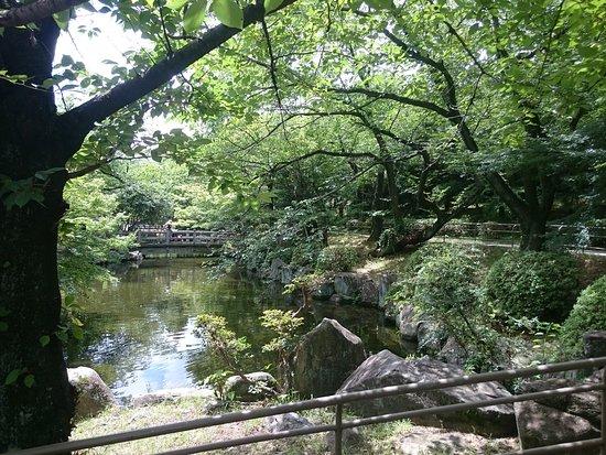 Takahama, Japan: 春は桜がきれいな公園