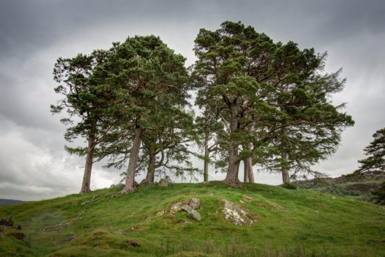 craigh na dun - photo de outlander: the past lives experience