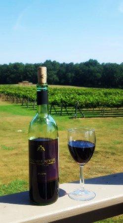 Newberry, SC: Deck overlooking vineyard