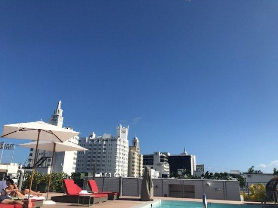 The Redbury South Beach : pool on roof