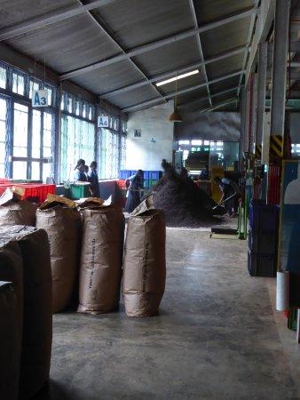 Gampola, Sri Lanka: salle de préparation des sacs