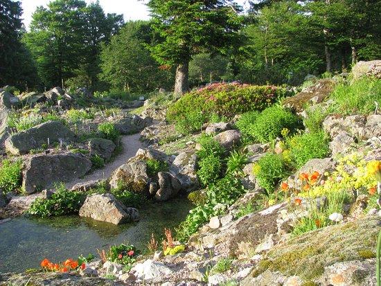 Jardin d'altitude du Haut Chitelet