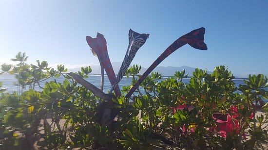 Moorea, Frans-Polynesië: deco sur site