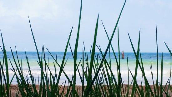 Ceiba, Porto Rico: Playa Medio Mundo