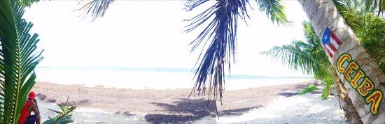 Ceiba, เปอร์โตริโก: Playa Medio Mundo