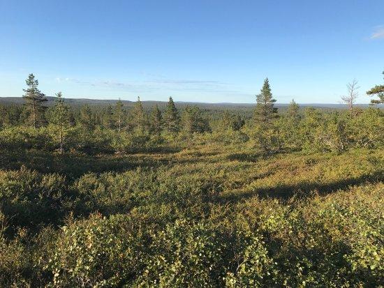 Lapland Hotel Riekonlinna: photo3.jpg