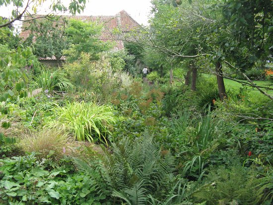 South Petherton, UK: The gardens in late August