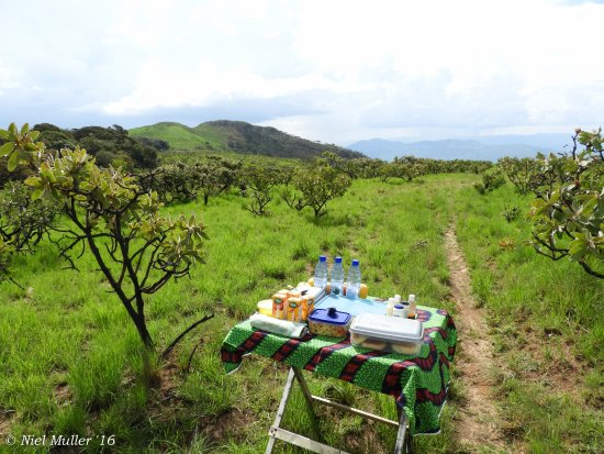Nyika National Park, Malawi: A picnic prepared for us by the lodge