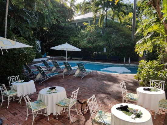 Poolside Is Nice Picture Of The Gardens Hotel Key West
