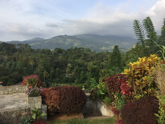 Miwaladeniya, Sri Lanka: photo4.jpg