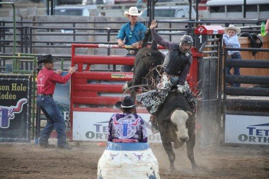 Jackson Hole Rodeo: Bull riding