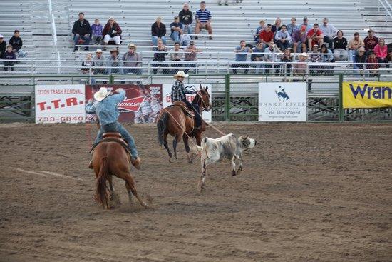 Jackson Hole Rodeo: Calf roping