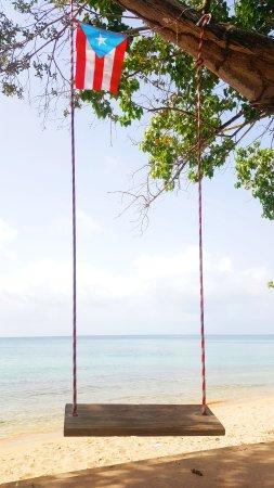 Seven Seas Beach: 2017-08-30 10_large.jpg