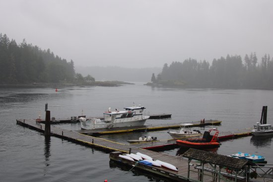 Quathiaski Cove, Canadá: Morning and the jetty