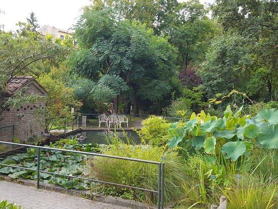 Orto Botanico di Ferrara
