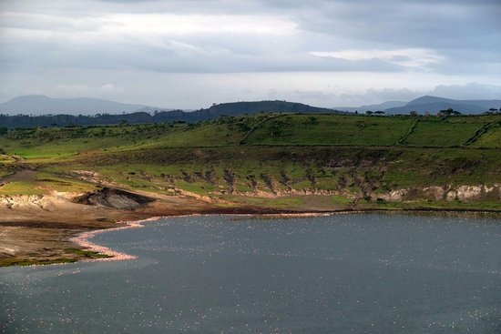 Abidjatta-Shalla National Park, Ethiopia: Part of the view towards the Flamingo lake... Like in biblical times...
