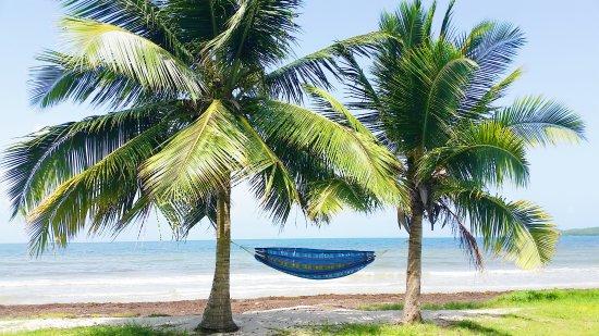 Ceiba, เปอร์โตริโก: Los Machos Beach