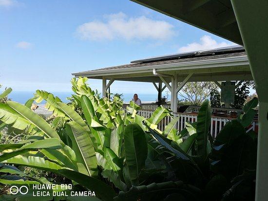 Holualoa, HI: IMG_20170817_092329_large.jpg