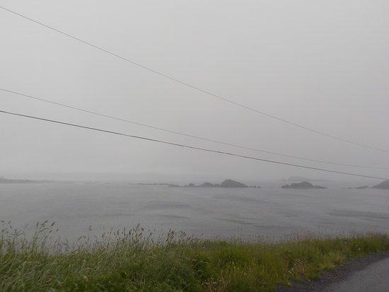 2017-07-01 Irish Loop View From Road