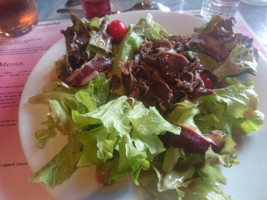 salade magret canard g sier picture of ferme de roubegeolles vayrac tripadvisor. Black Bedroom Furniture Sets. Home Design Ideas