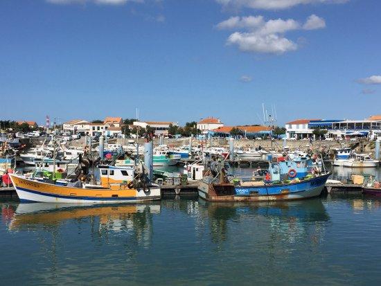Le Port de la Cotinière : photo3.jpg
