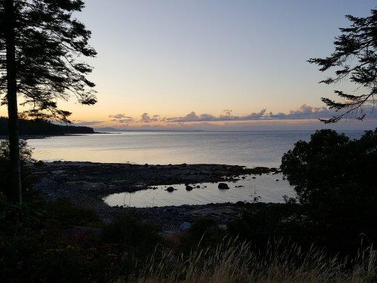 Hornby Island, แคนาดา: 20170830_195417_large.jpg