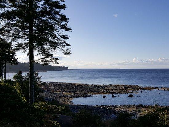 Hornby Island, Canada: 20170830_183312_001_large.jpg