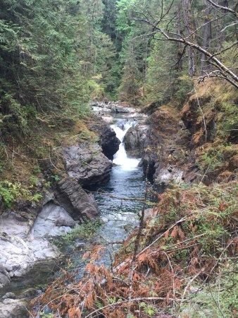 Little Qualicum Falls Provincial Park 이미지