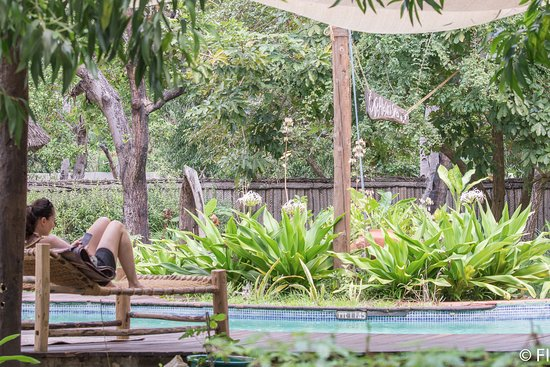 Pole Pole Bungalows: Happy customer relaxing by the pool