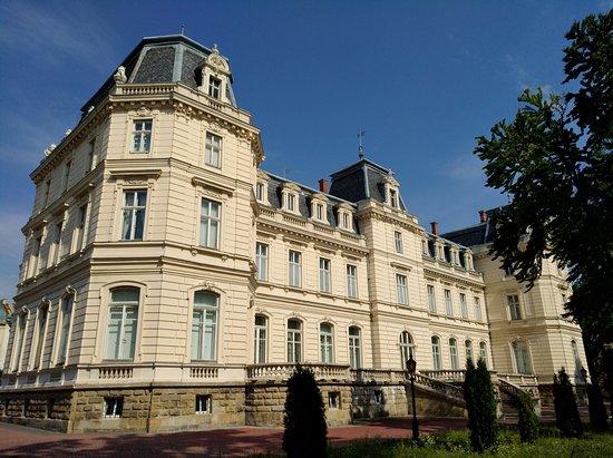 Potoсki Palace: Pohled z parčíku