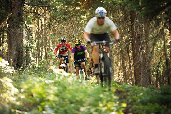 Mountain Biking in Red Lodge.