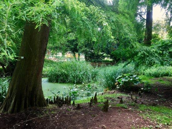 Alter Botanischer Garten Kiel: Eco Gardening