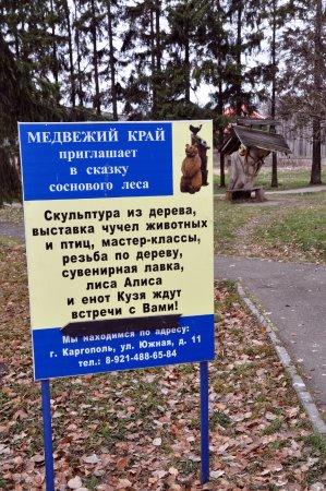 Каргополь, Россия: Медвежий край - приглашает в сказку соснового леса.