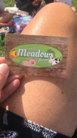 Mini Meadows Farm: photo7.jpg