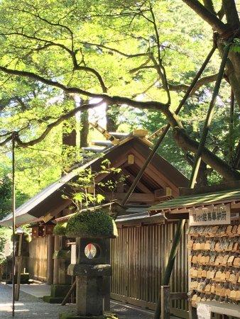 Amano Iwato Shrine: photo0.jpg