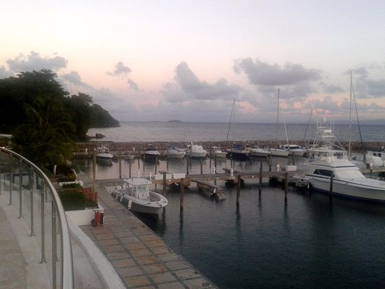 The Bannister Hotel & Yacht Club: Vista de la marina