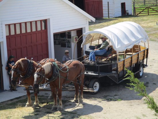 Deer Lodge, MT: One of the Hands-On Experiences -- Riding in a Covered Wagon