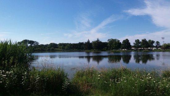 Evansville, WI: Lake
