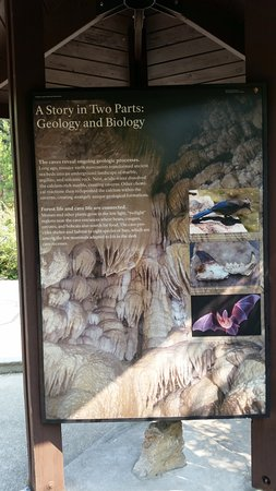Oregon Caves National Monument: Geology & Biology