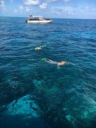 Ocean Divers Bayside : photo1.jpg