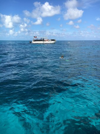 Ocean Divers Bayside : photo2.jpg