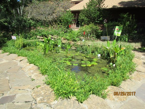 Burr Oak Woods Conservation Area: pond in the front of the blg