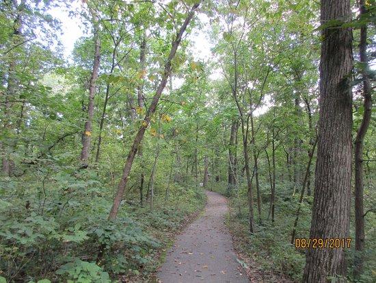 Burr Oak Woods Conservation Area: walking area