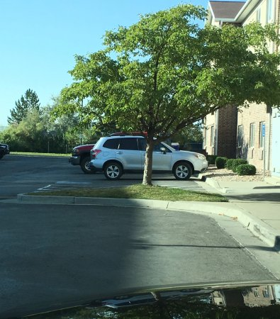 Super 8 Salt Lake City Airport : Parked compact car next to this curb. No 'No Parking' sign nor painted curb for Fire lane.