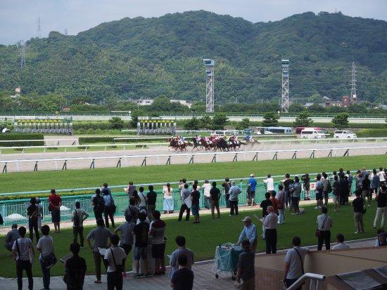 Kokura Horse Tracks